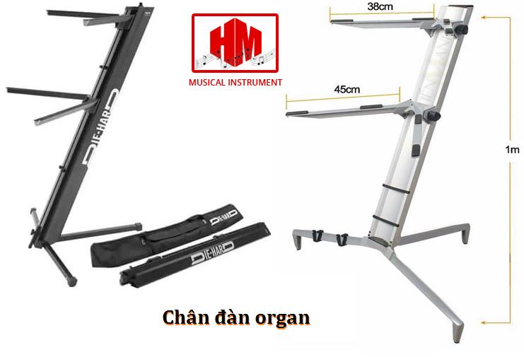 chan dan organ