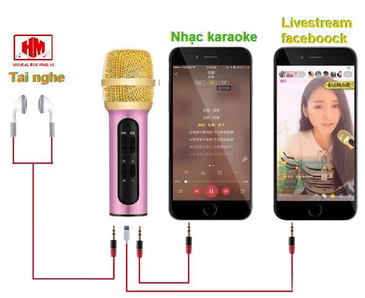 mic c11